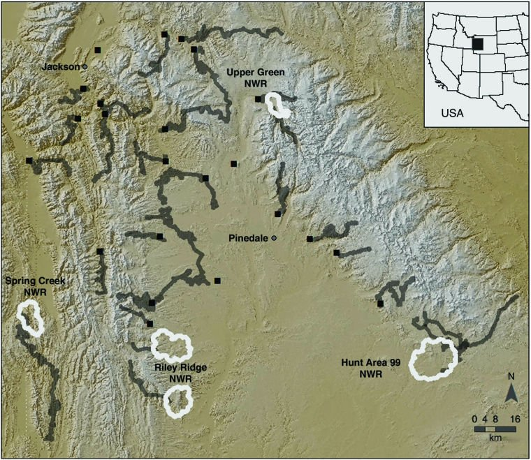 Study: Elk feeding curtails migration | Environmental ... on idaho elk population map, elk hunting map, elk range north america, elk subspecies, elk feet, colorado elk migration routes map, elk range in michigan, elk basin map, colorado elk population map, elk population by state, elk range united states, elk in oregon, elk population density map, elk diet, elk in ohio, us elk population map, elk washington map, colorado elk density map, elk in mountains,