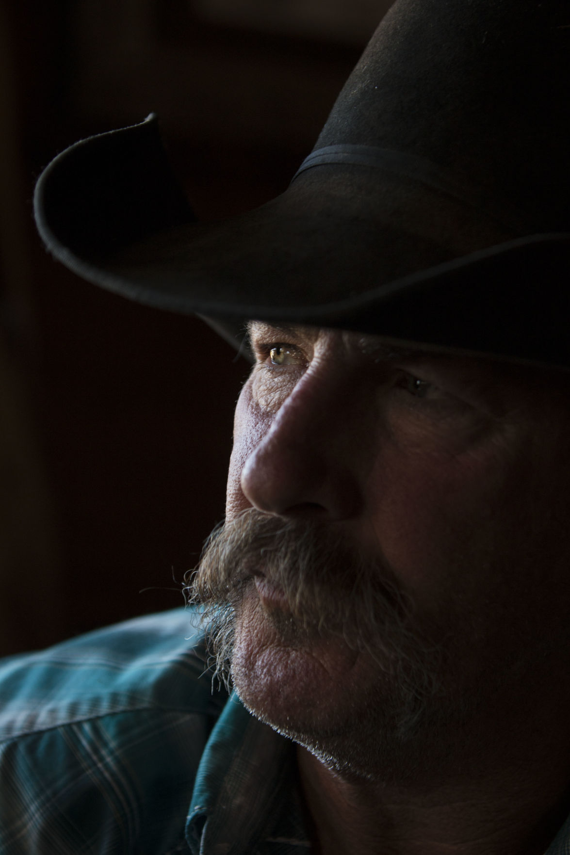 The man behind the Black Rock Ranger District horses, Jack Hatch
