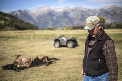 Walton Ranch wolf kill
