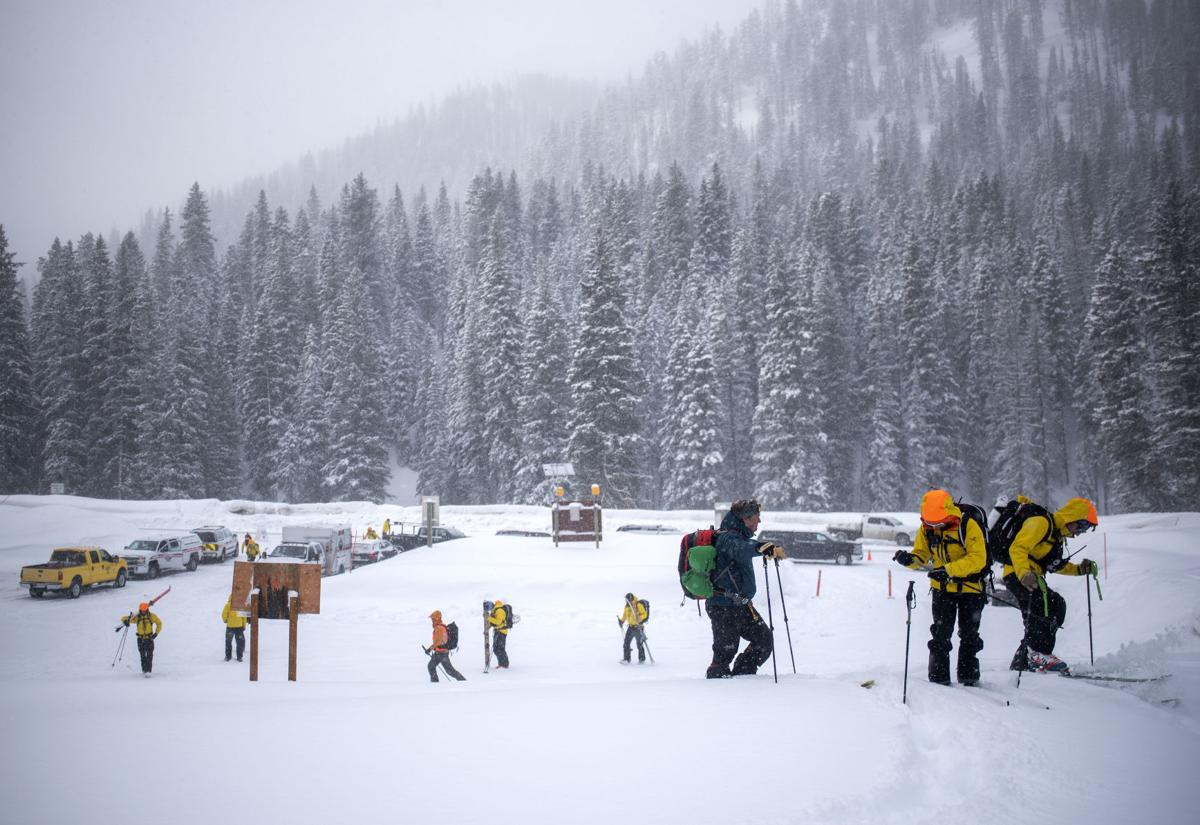 Search for avalanche victim on Taylor Mountain