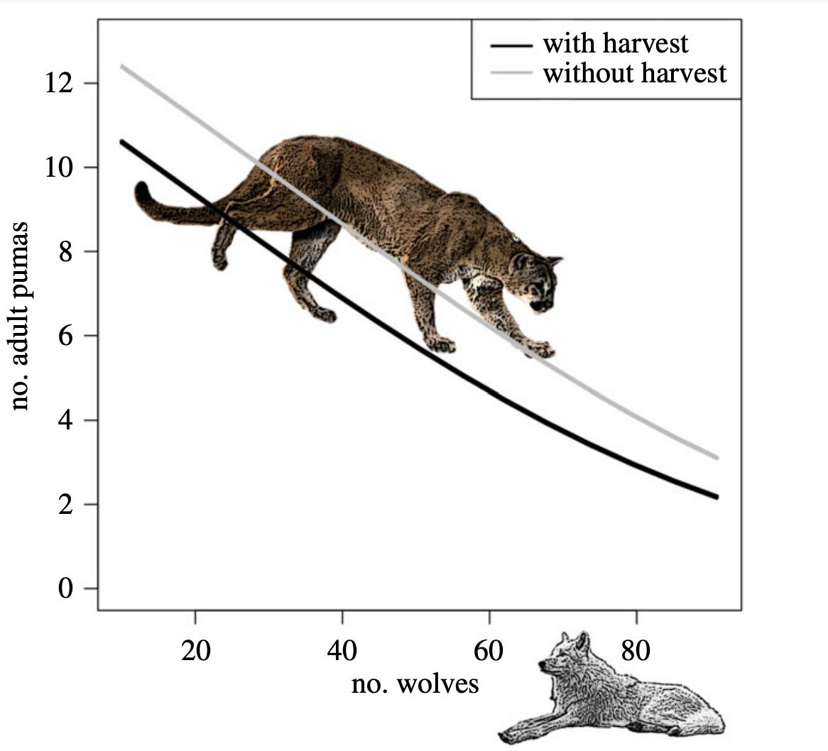Wolf population effects