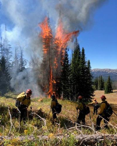Grouse Mountain prescribed fire