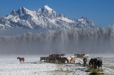 Walton Ranch