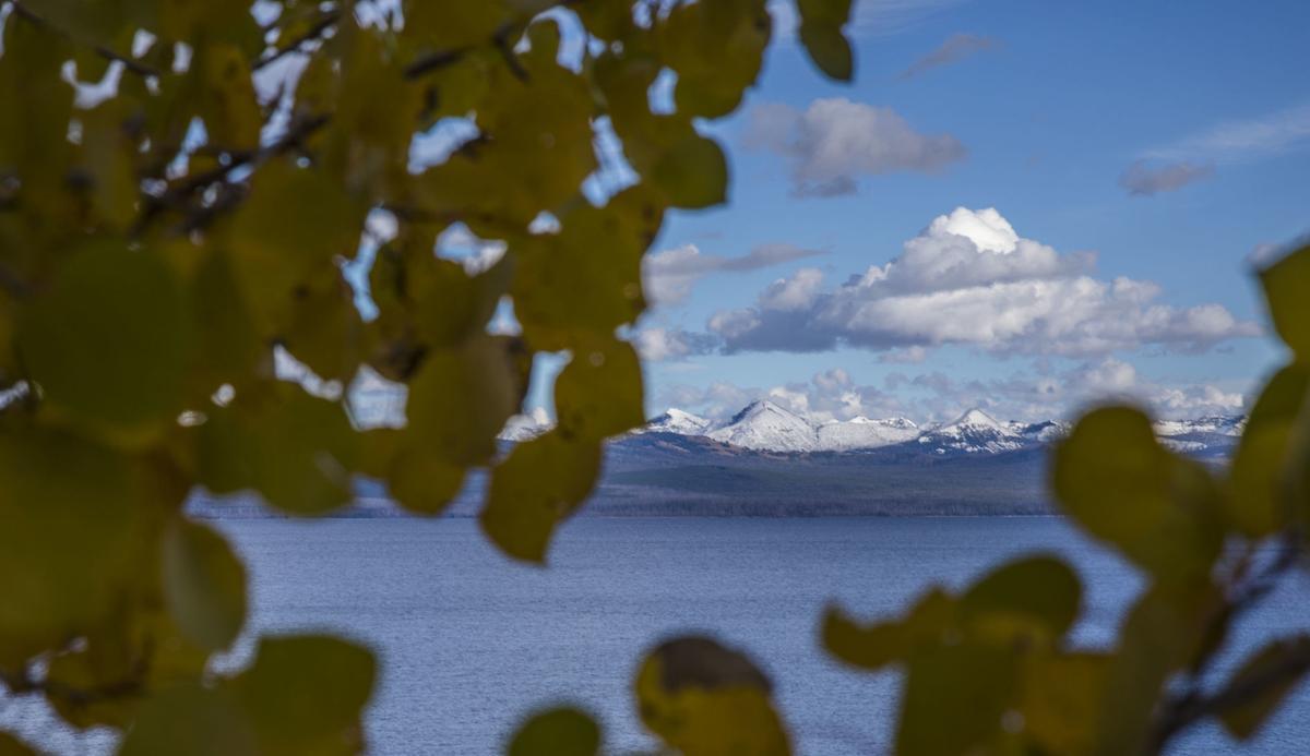 A fall day in Yellowstone
