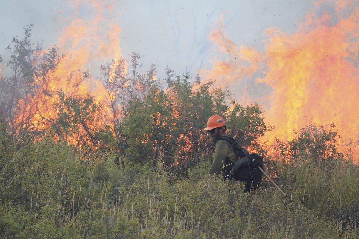 Saddle Butte Fire