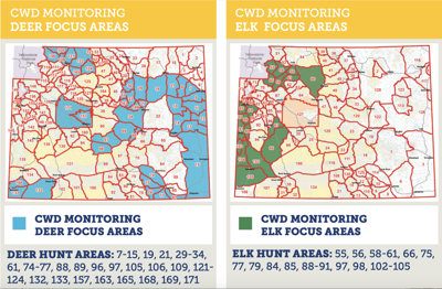2020 CWD focus areas