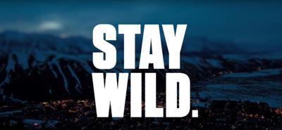 stay wild screenshot