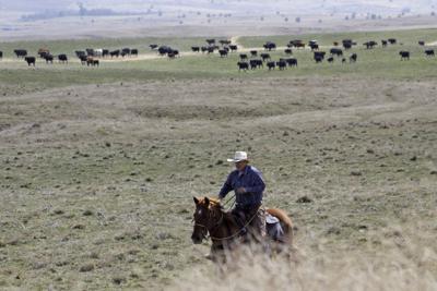 Virus Outbreak Rural America