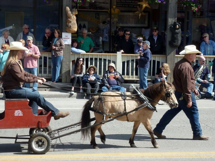 Mini Horse Died Of Kidney Failure Cops Courts Jhnewsandguide Com