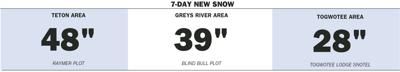 Weekly Snow Totals, Jan. 8