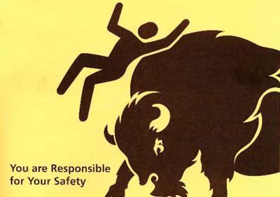 Yellowstone bison warning