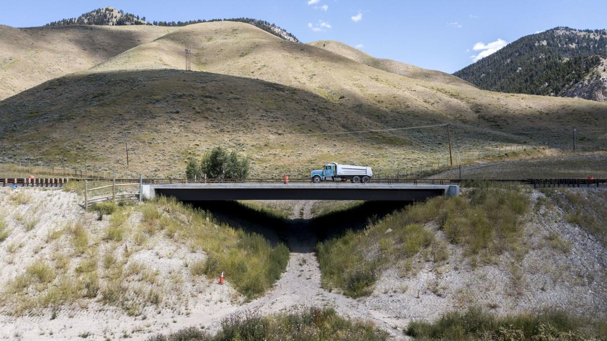 SPET - Wildlife underpasses