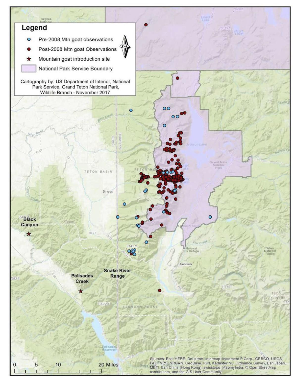 Mountain Goat Management Plan and Environmental Assessment