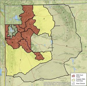 Hunt planners aim to protect Teton park grizzlies