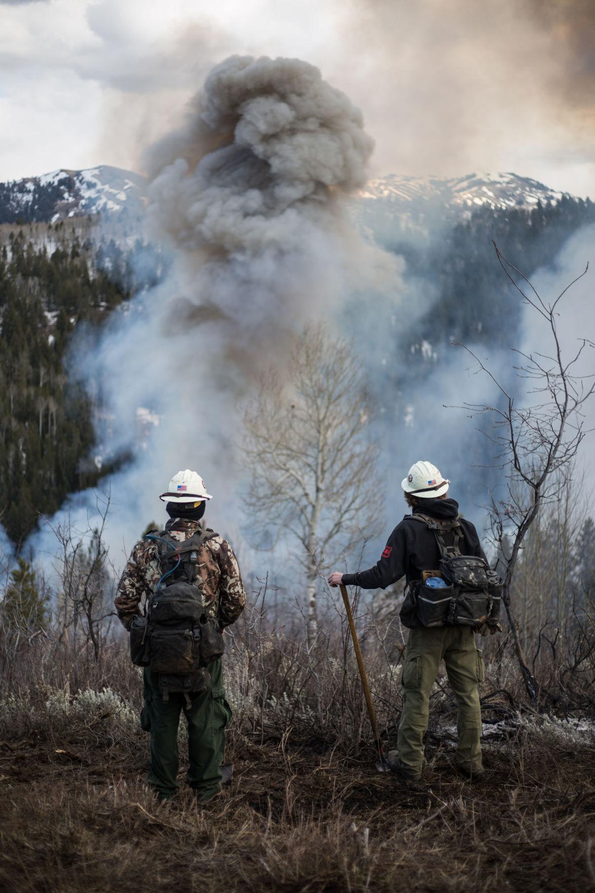 Butler Creek prescribed burn