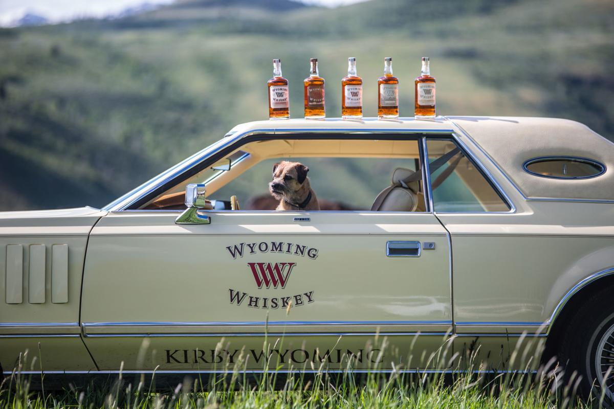 wyoming whiskey dog