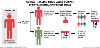 Contact tracing finds cases quickly