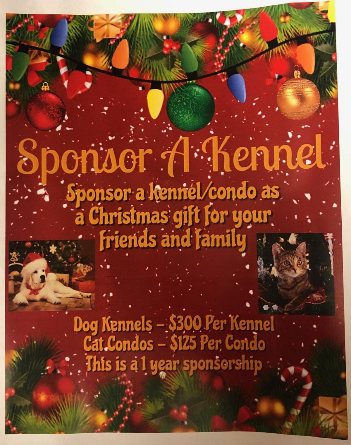 Animal shelter offers kennel, cat condo sponsorships