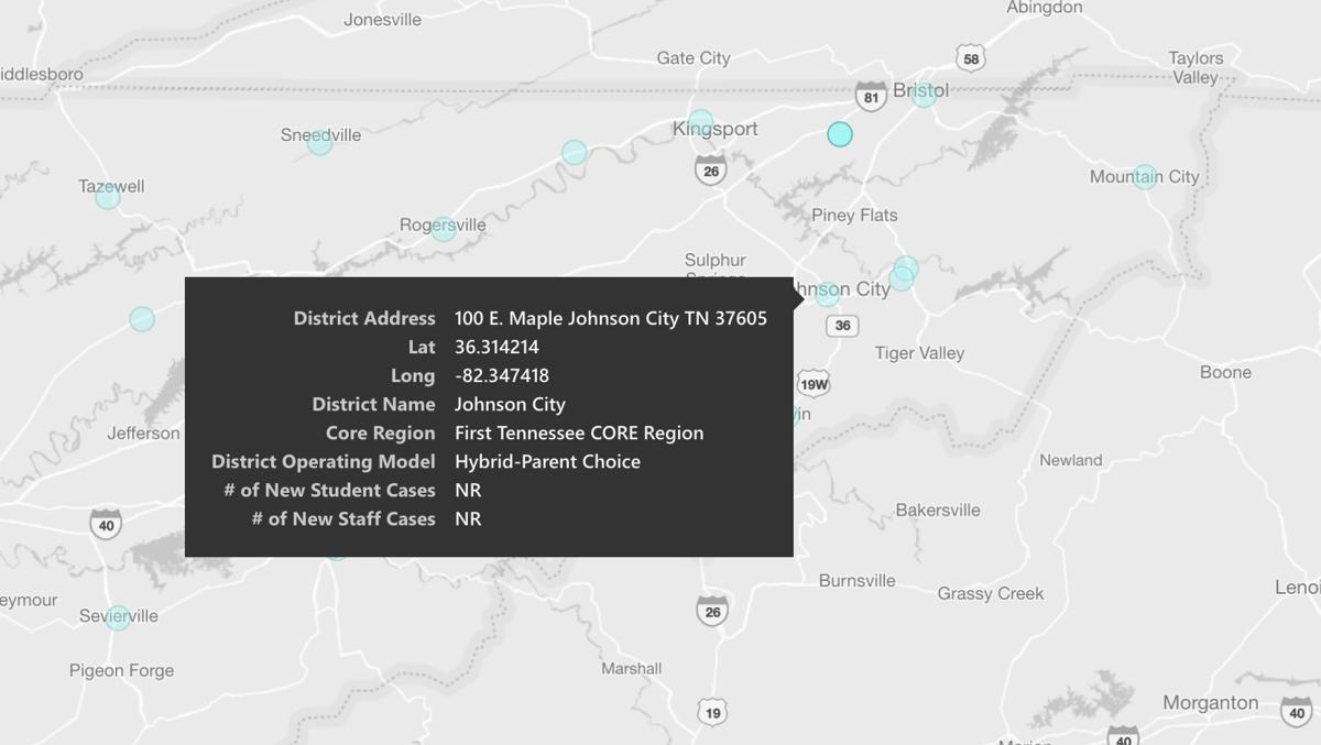 Johnson City District