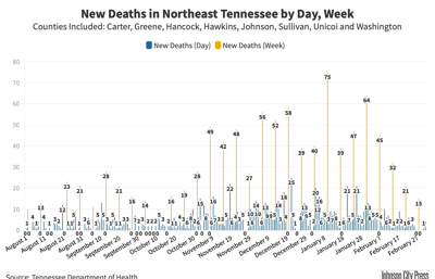 Deaths in NETN Since Aug. 1@2x-48.png