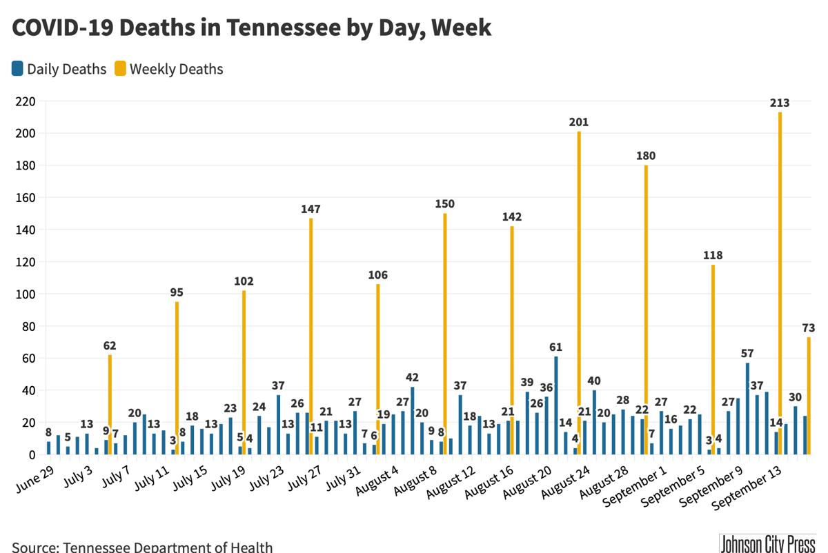TN Deaths@2x-14.png