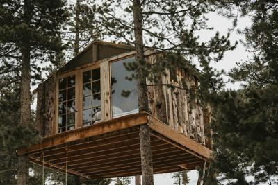 Homes Treehouses