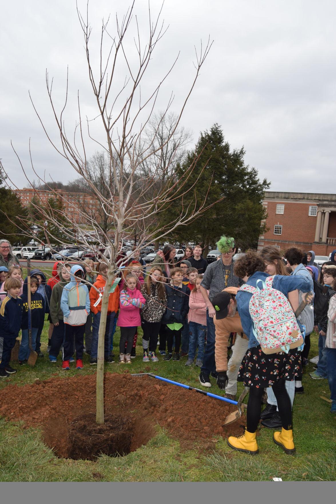 University School celebrates Arbor Day with new red maple tree