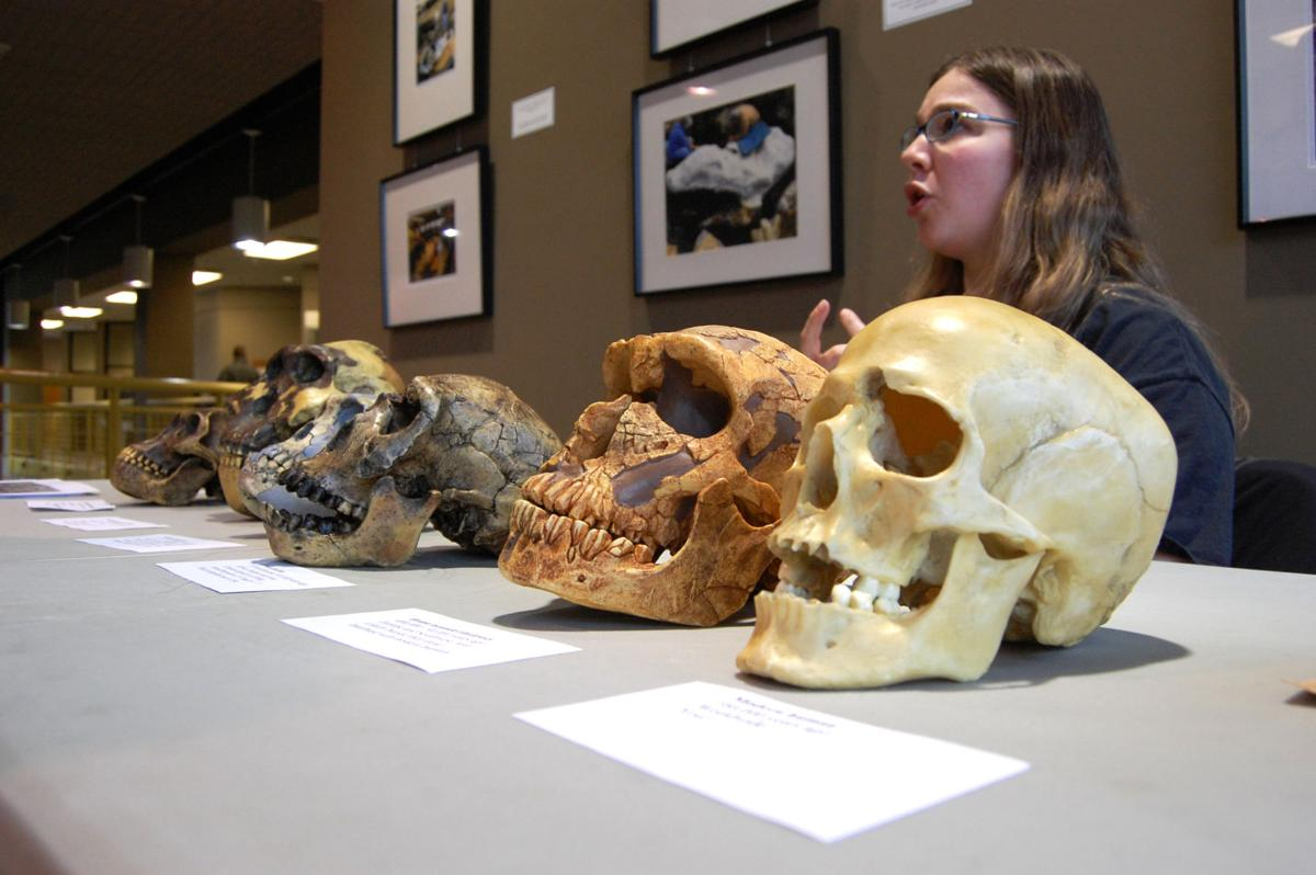 Public invited to celebrate Darwin Day at Gray Fossil Site
