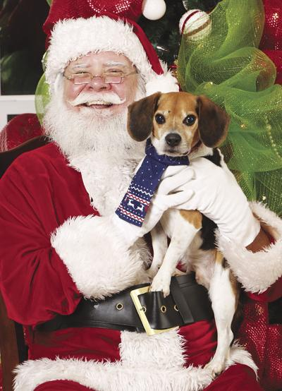 NEAHS Holiday Pet Photos sees changes