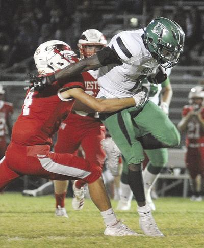 Area teams set for state playoff games