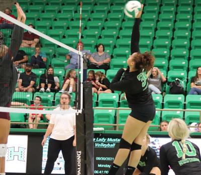 210915-TD-hoxie-volleyball-photo