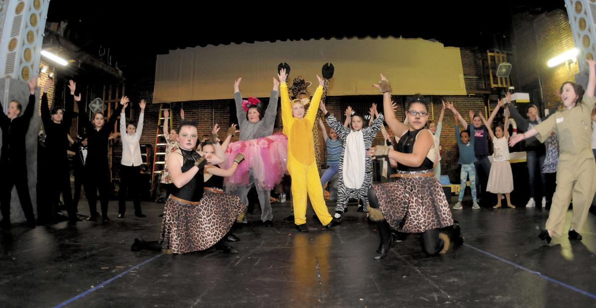 Apollo Youth Theatre stages 'Madagascar – A Musical Adventure JR'