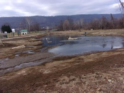 Poor House Farm Park lake dry, MBCPR awaits permits for dredging