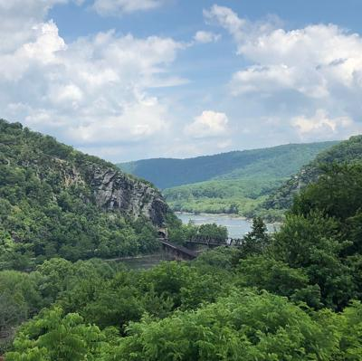 E. coli spikes detected in Shenandoah River