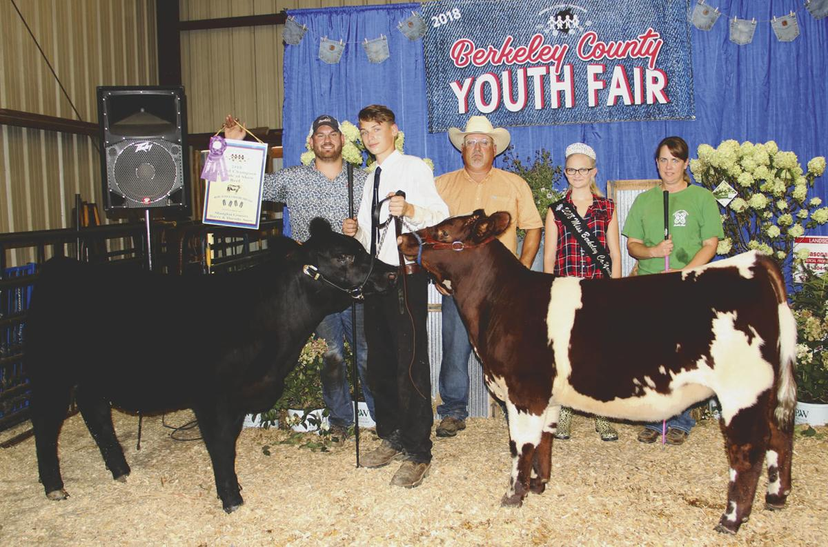 Youth Fair beef show winners announced | Local News