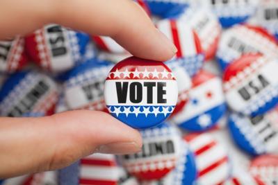 Voting Stock2