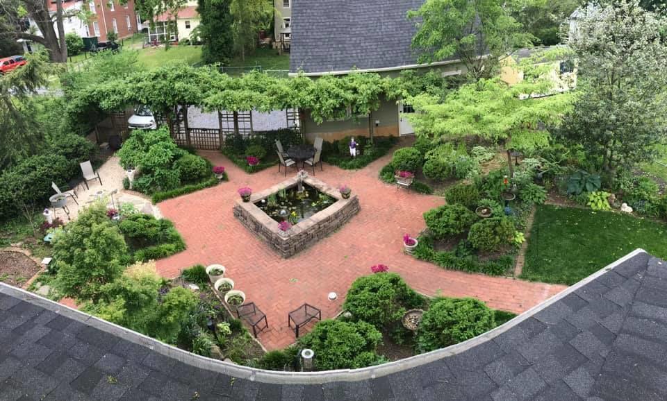 Jean King garden