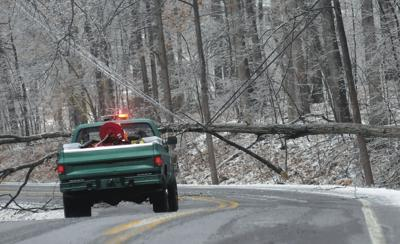Ice storm downs trees, power lines throughout region