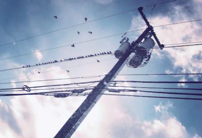 power lines STOCK