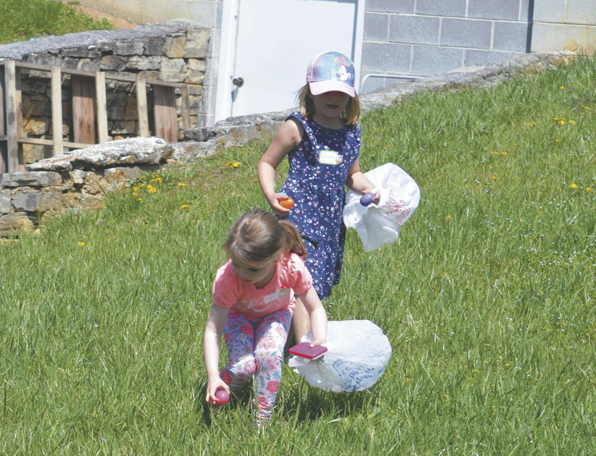 Treasure Hunt: Families participate in Easter egg search