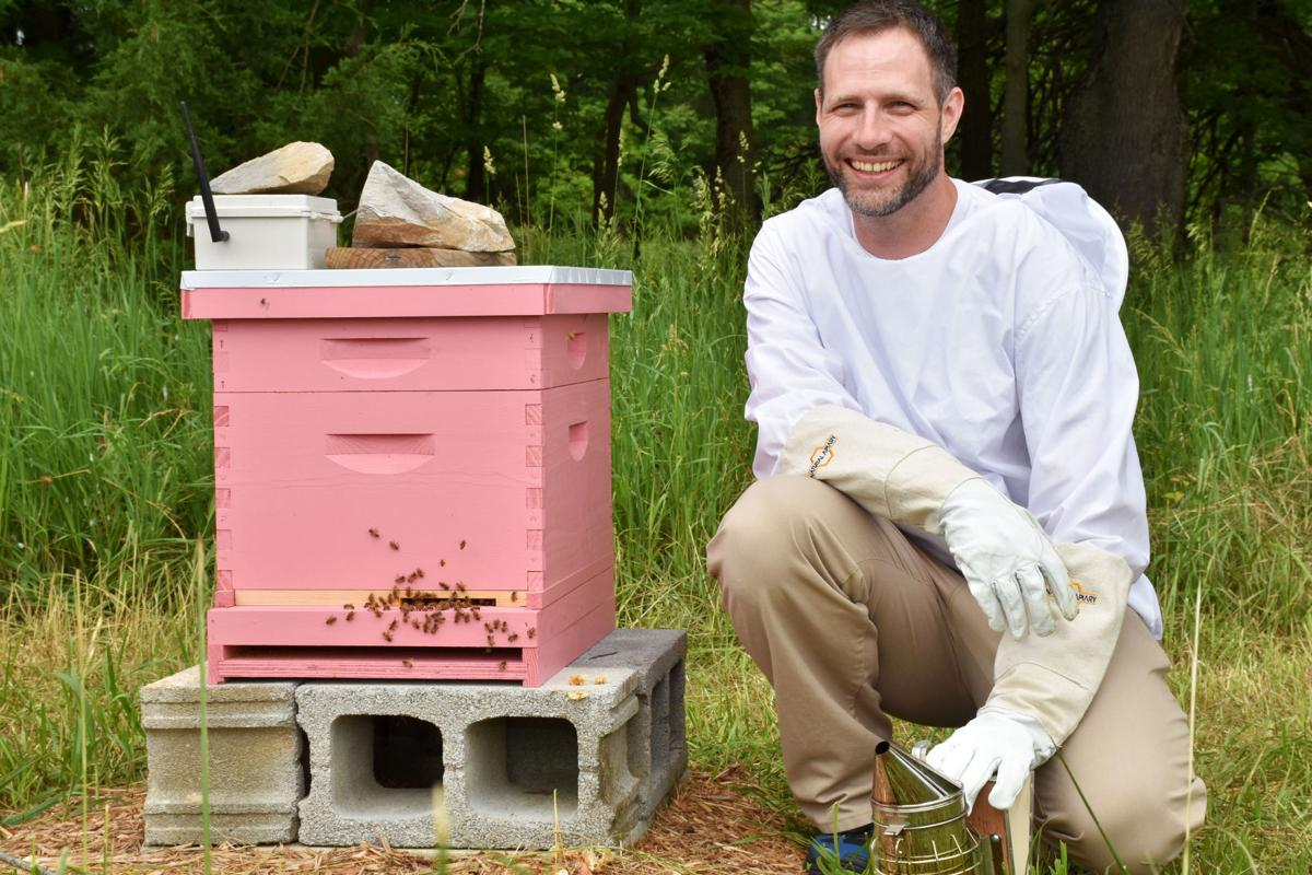 Shepherd professor is developing beehive sensor technology