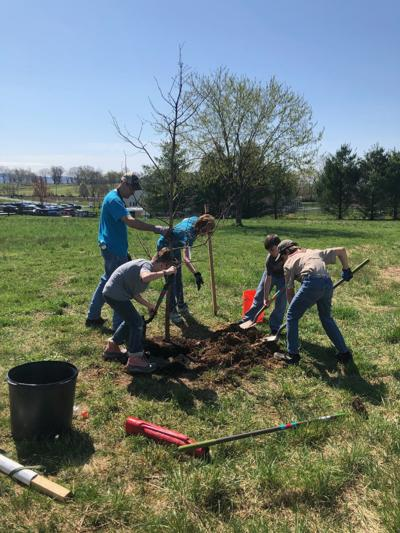 Continual tree planting on NHES grounds in Jefferson County