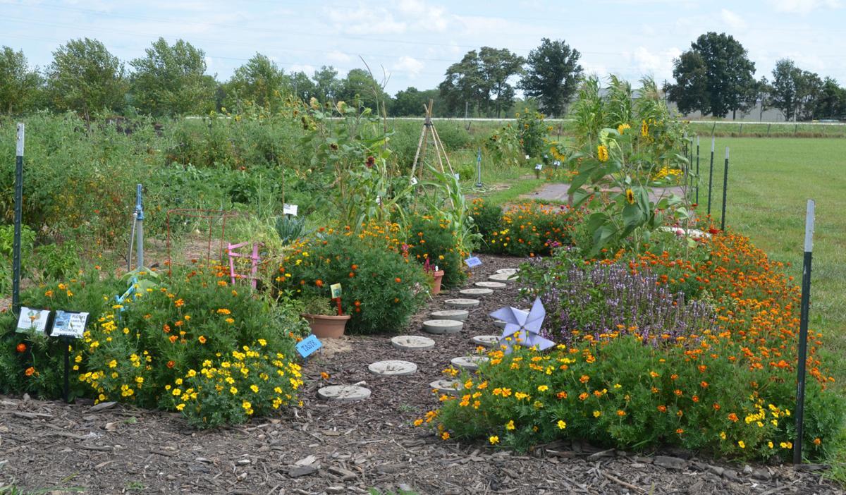 Sensory garden mature