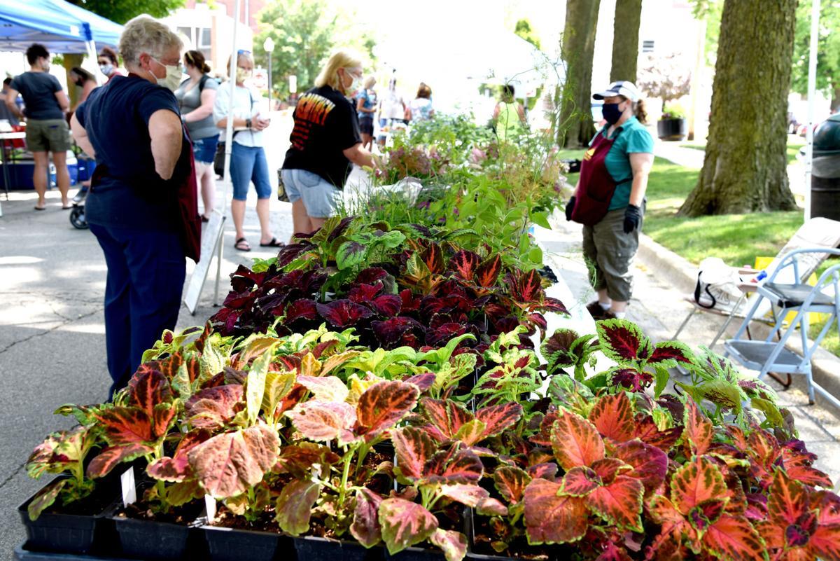 Farmers market_6505.jpg
