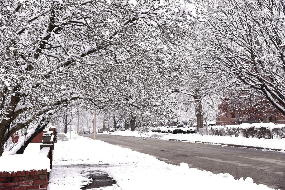 snow state street_2401.jpg