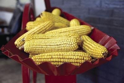 Corn 2021