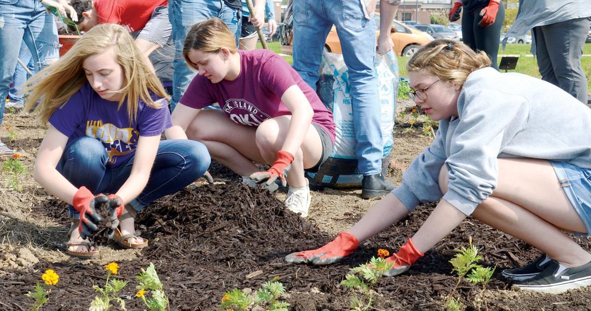 Sensory garden planting