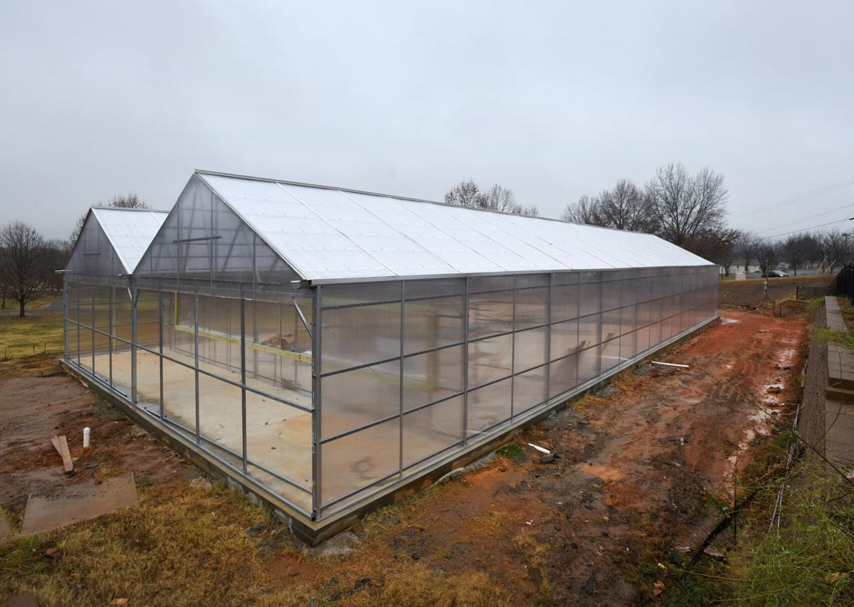 Kimberley Park greenhouse