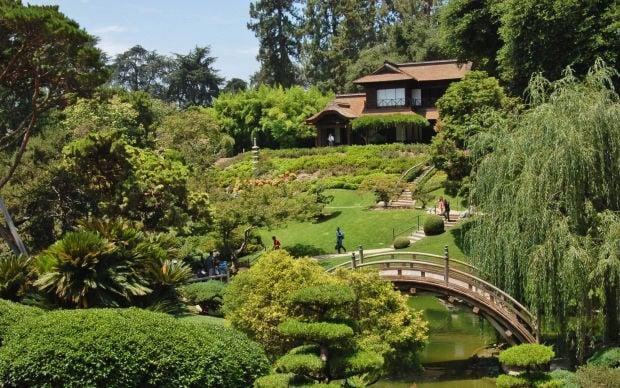 Huntington Botanical Garden Among The Finest In U S Food