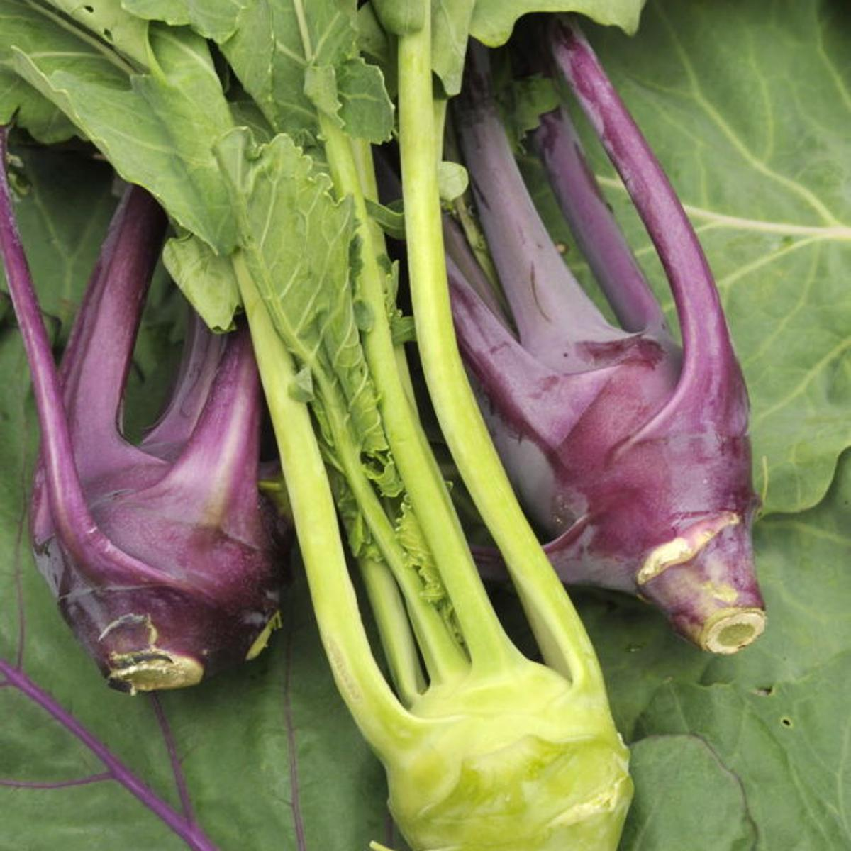 What Exactly Is Kohlrabi Food Journalnow Com